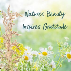 natures_beauty_sarah_haykel_resources_ny