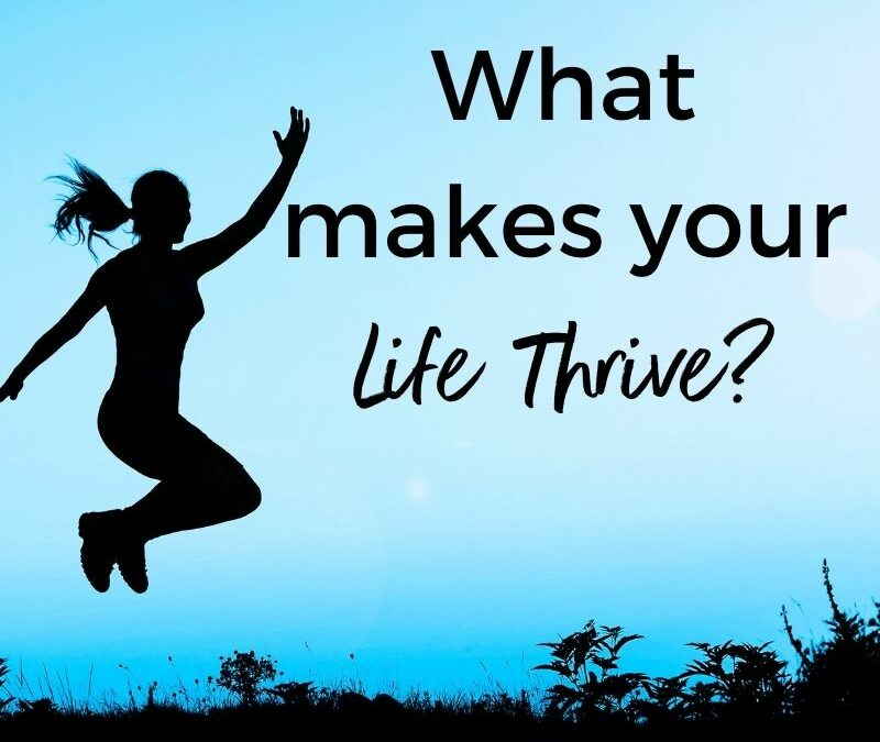 What is the #1 Thing That Makes Life Thrive?