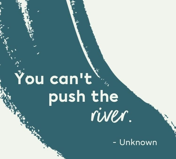 You Can't Push The River