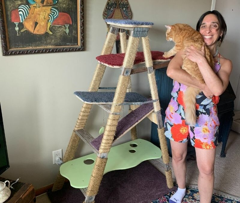 DIY Cat Ladder: From Inspiration to Completion